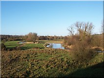 SU4726 : Itchen water meadows, near Winchester by Dave Jacobs