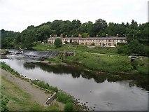 O0335 : Lucan Weir from Lucan Bridge by Warren Buckley