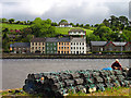 V9948 : Bantry Town and Harbour by Pam Brophy