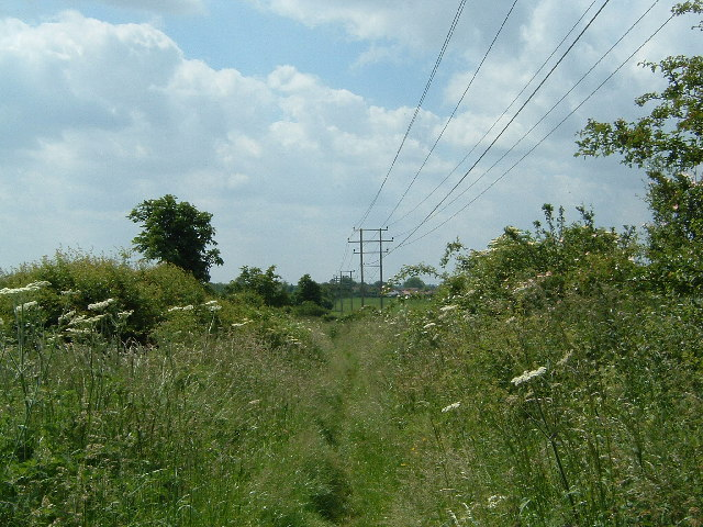 The Path to Sutton Wick