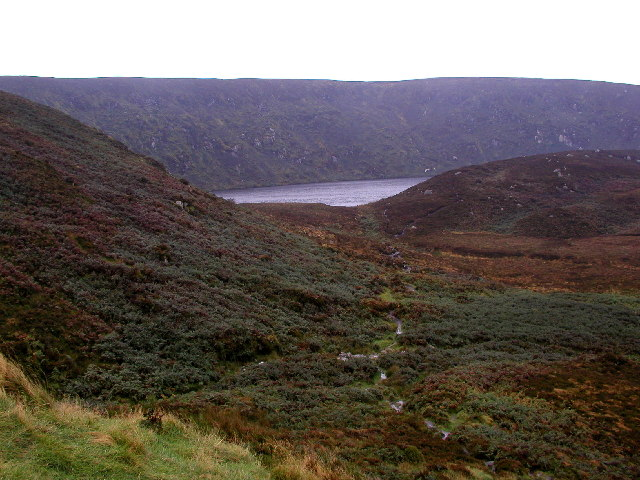 Moorland between the R115 and Lough Bray Upper