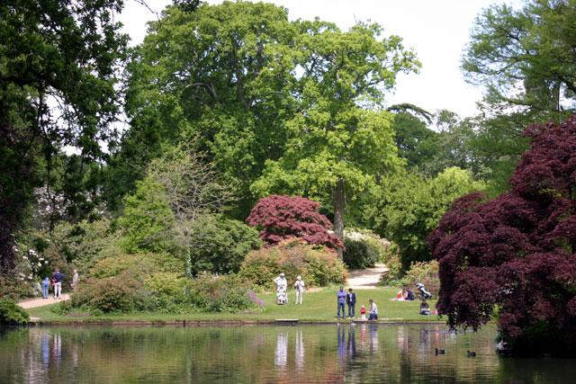 Exbury Gardens by Kevin Danks