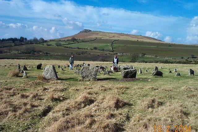 Yellowmead circles - Dartmoor