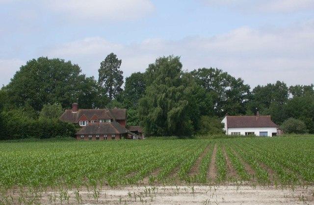 Rural Liphook