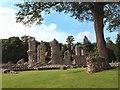 TL8564 : Ruins of Bury St Edmunds Abbey by Bob Jones