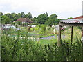 SU6774 : Armour Hill Allotments by Chris Collard