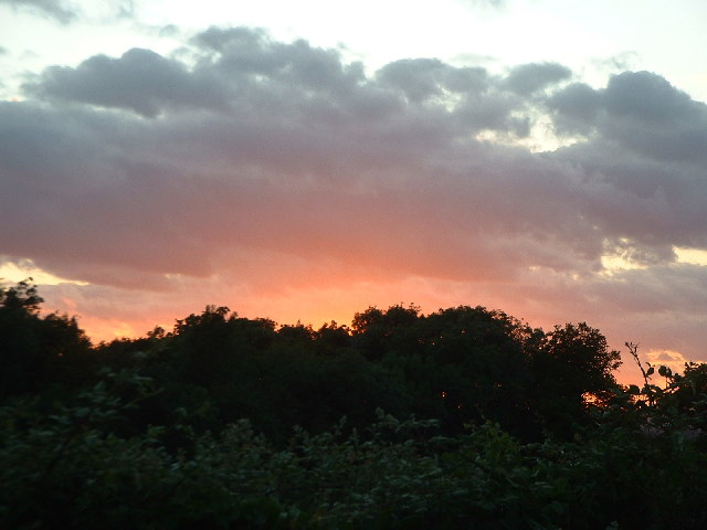 Sunset over woodland to the North-West of Collendean Lane