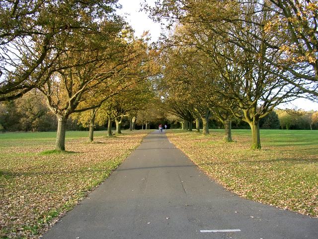 Coronation Avenue North, Southampton Common