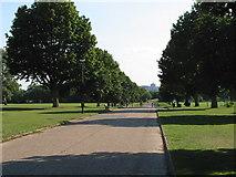 SU9878 : Upton Court Park, Slough by Darren Smith