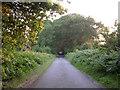 SU3719 : Hoe Lane, northwest of Toot Hill by Jim Champion