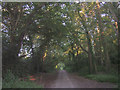 SU4117 : Route of a Roman road through Chilworth towards Bassett by Jim Champion