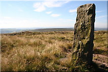 SE0130 : Standing Stone, High Brown Knoll Edge by Mark Anderson