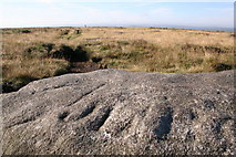 SE0030 : Carved stone, High Brown Knoll by Mark Anderson