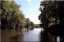ST6669 : River Avon, near Somerdale by Martyn Pattison
