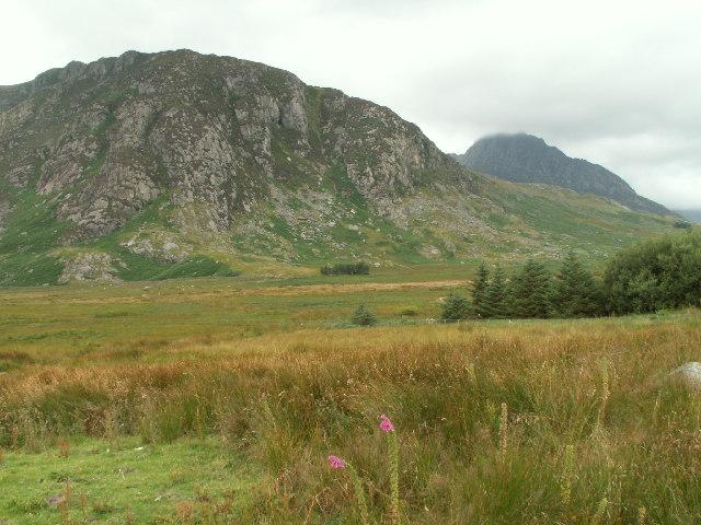 Gallt yr Ogof, Llugwy valley