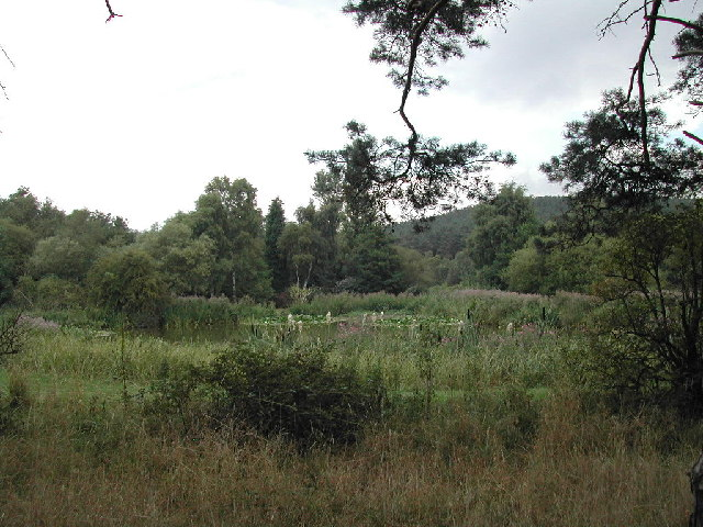 Salterford Dam