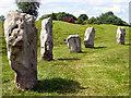 SU1069 : Avebury Stones by Chris Collard