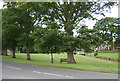 NZ0371 : Matfen Village Green by Peter Brooks