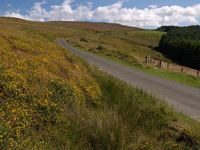 Druidale Road.   Isle of Man.