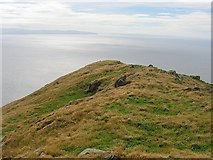 NX0199 : Summit ridge, Ailsa Craig by Richard Webb