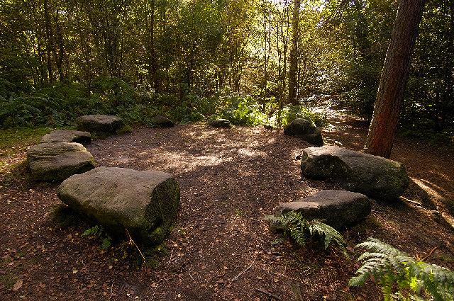 'Druid's Circle' The Edge, Alderley Edge