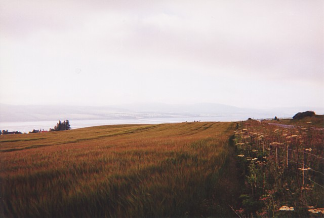 View towards Cromarty Firth from near Dunvournie