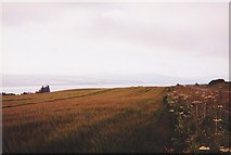 NH5857 : View towards Cromarty Firth from near Dunvournie by Ron Strutt