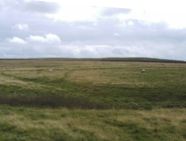 Roman camp on Mastiles Lane
