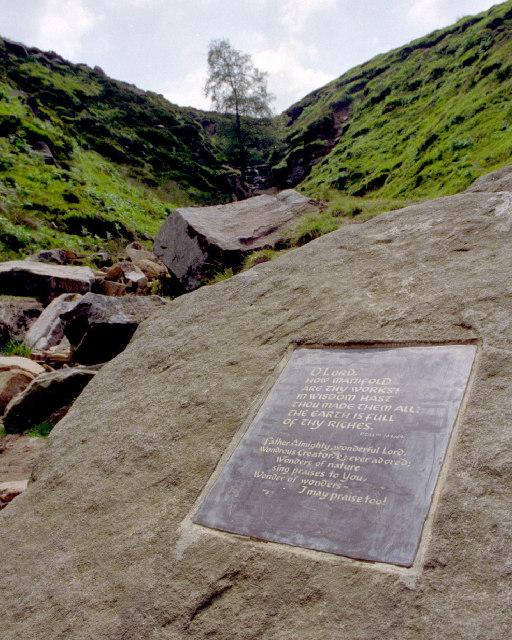 Bronte Waterfall