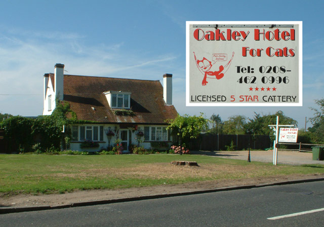 Oakley Hotel for Cats, Oakley Road BR2