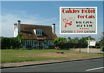 TQ4265 : Oakley Hotel for Cats, Oakley Road BR2 by Philip Talmage