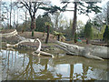 TQ3470 : Dinosaurs at Crystal Palace Park by Peter Jordan