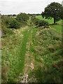 SK8571 : Disused Railway Line by Richard Croft