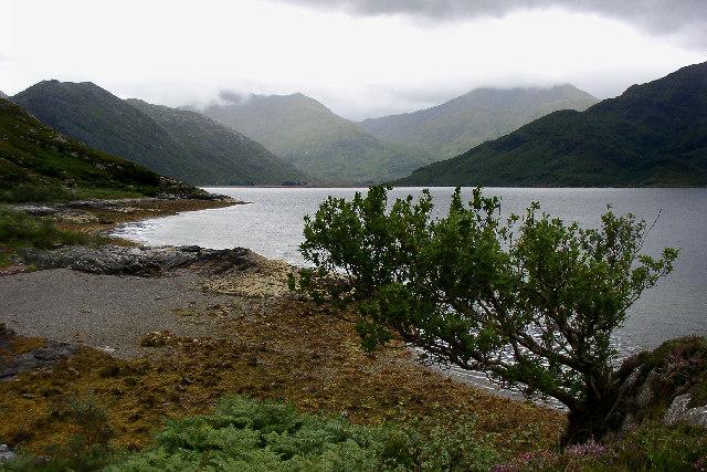 North shore of Loch Hourn