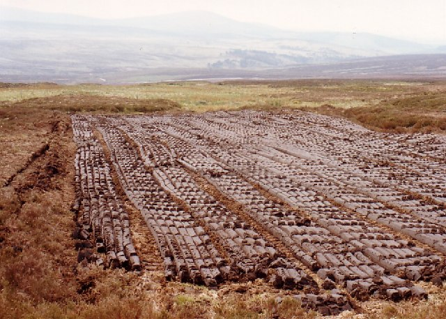 Rows of cut peat in the Wicklow Mountains