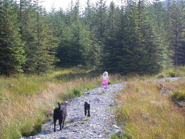 Path to Cornish Loch.