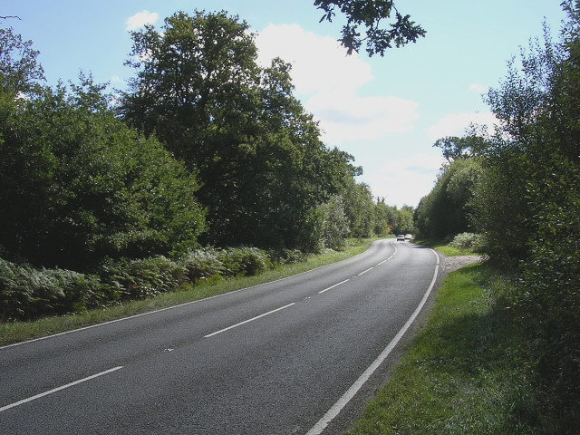 The A337 at Brockis Hill, New Forest