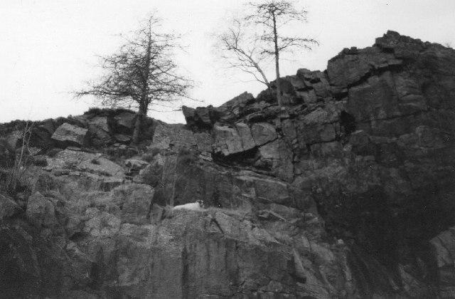 Braedownie Quarry