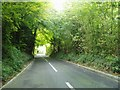 TQ3854 : Narrow steep road past the quarry by Nigel Freeman