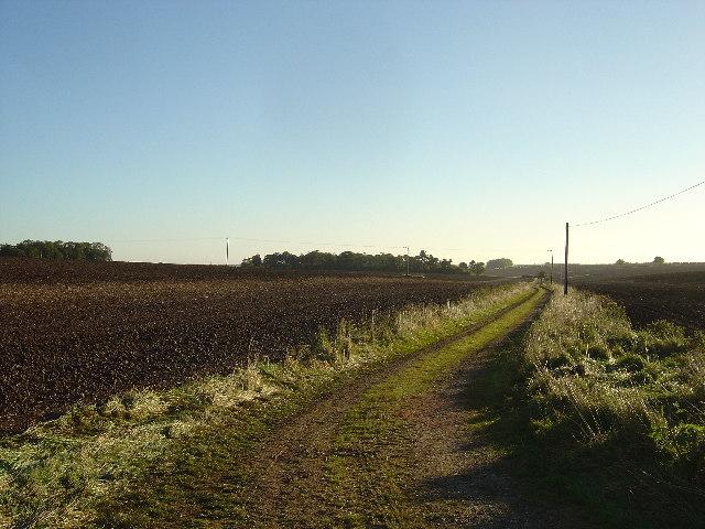 Farm track at Stevenson Wold