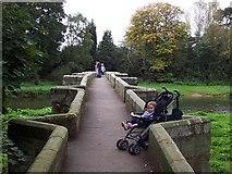 SJ9922 : Essex Bridge, Shugborough by Adrian Bailey
