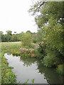 SP2149 : River Stour near Wimpstone by Dave Bushell