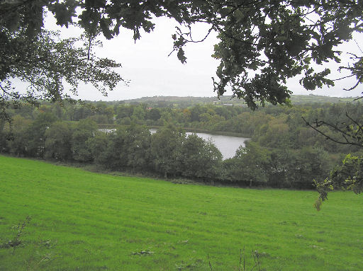 Martry Lough