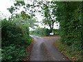 TQ5805 : Otteham Court Lane by Simon Carey