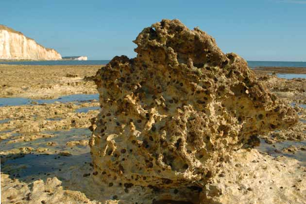 Rockpools at Peacehaven Cliffs by Nat Bocking