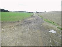 SU5656 : Farm Track by Nygel Gardner