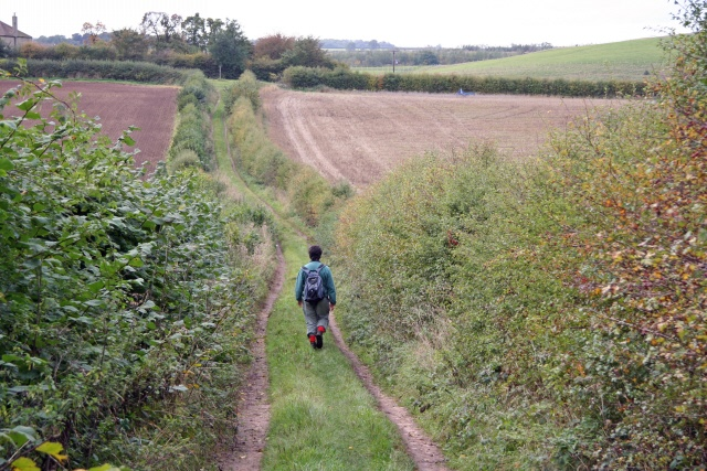 Bridleway near Holbeck and Creswell