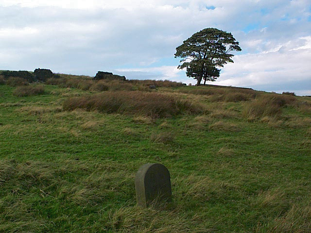 Boundary stone above Lower Fold