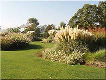 TQ1877 : Grass Garden at Kew by David Hawgood