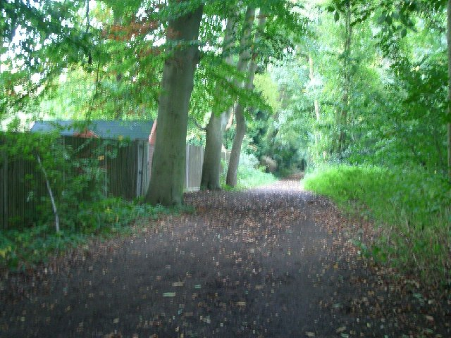 Bridleway on Esher Common